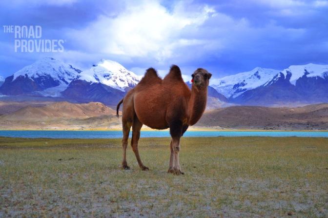 Lago Karakul, las mejores imágenes