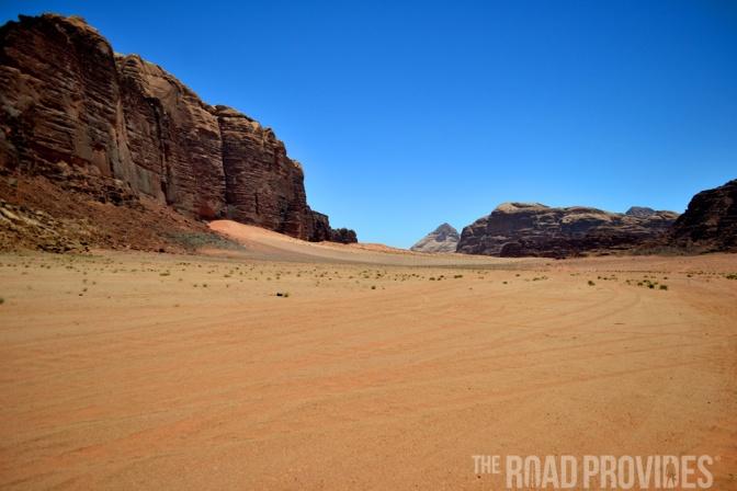 Moscas en el desierto de Wadi Rum